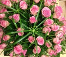 Composizione di rose rosa e papiro
