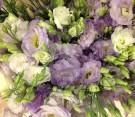 Bouquet lisianthus viola e bianco