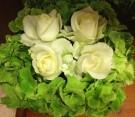 Centrotavola con rose bianche e ortensie verdi