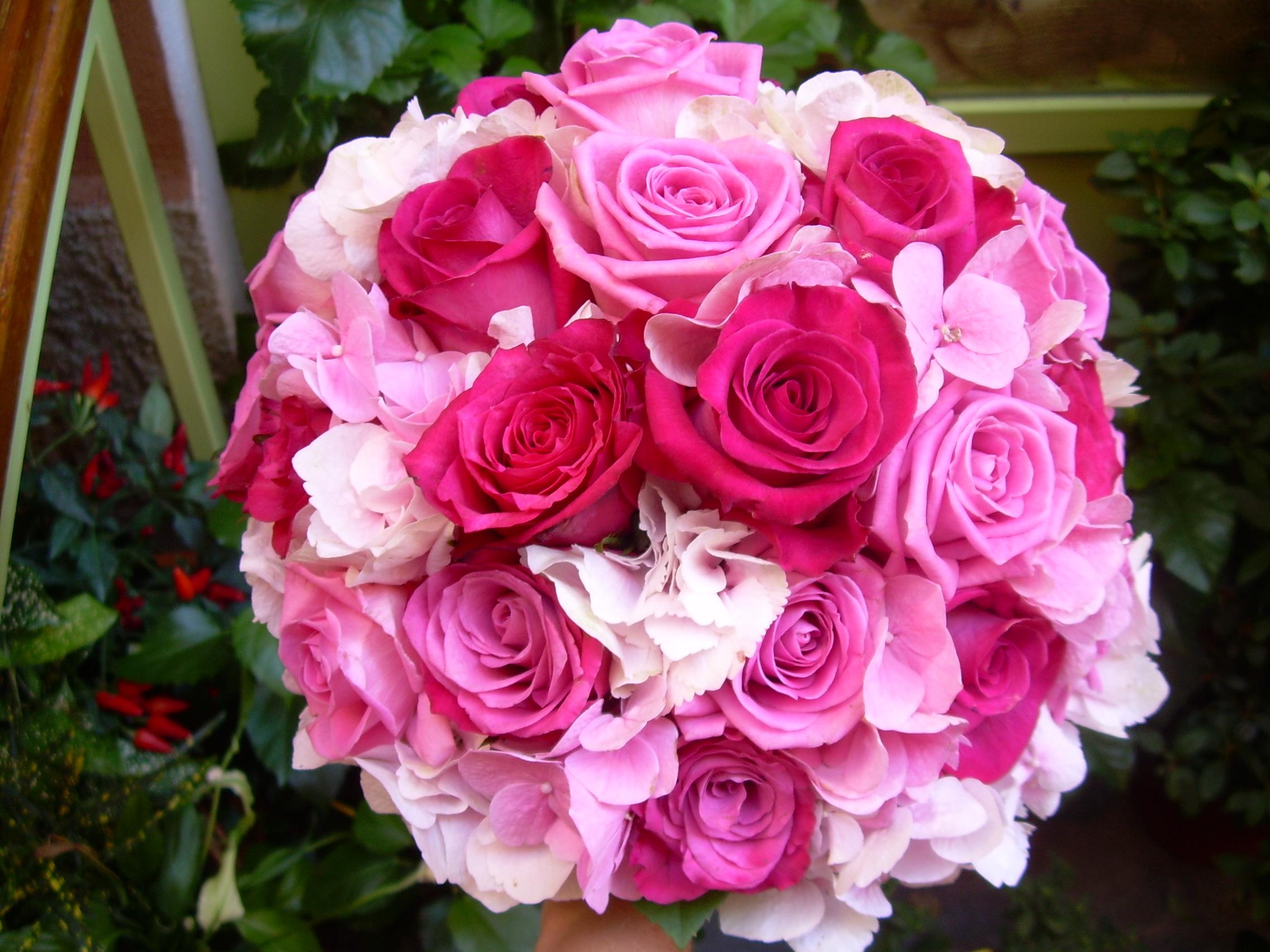 Bouquet rosa fucsia for Bouquet rose
