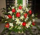 Composizione con lilium bianco e anthurium rosso