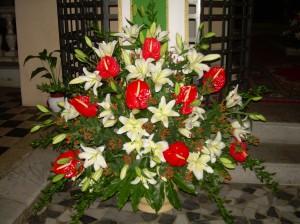 Elisabetta fiori e piante composizione con lilium bianco for Anthurium rosso