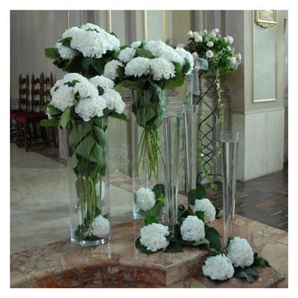Elisabetta fiori e piante vasi con ortensie bianche for Ortensie bianche