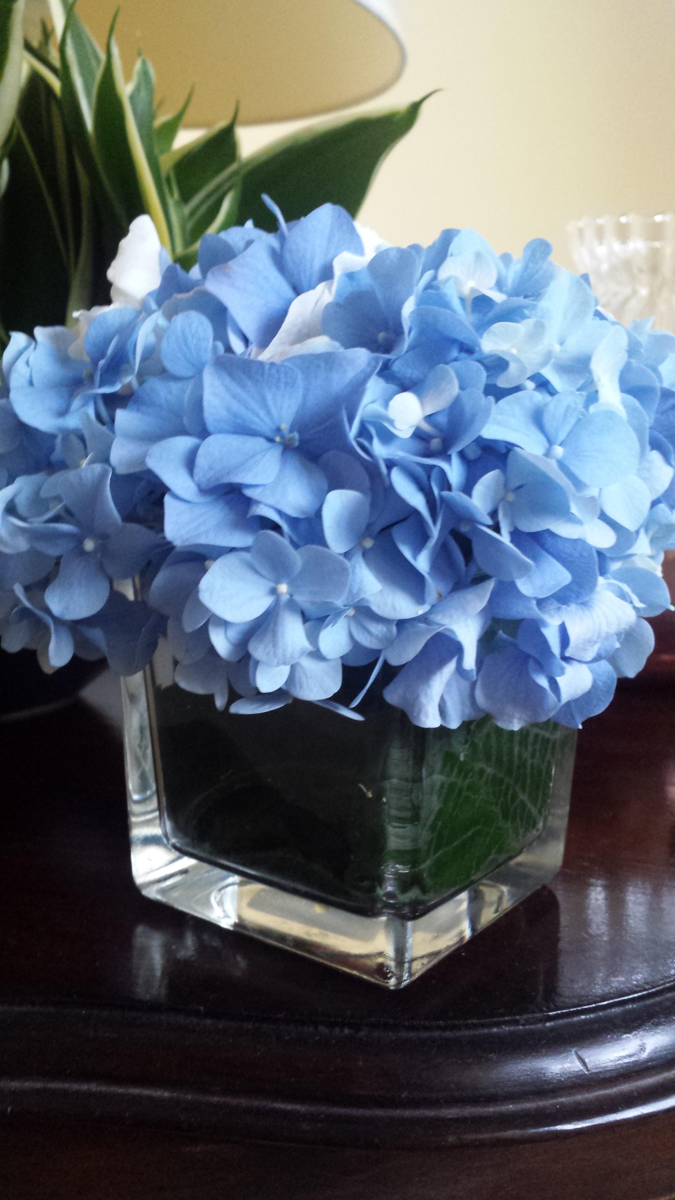 Centrotavola Con Ortensie E Candele : Elisabetta fiori e piante